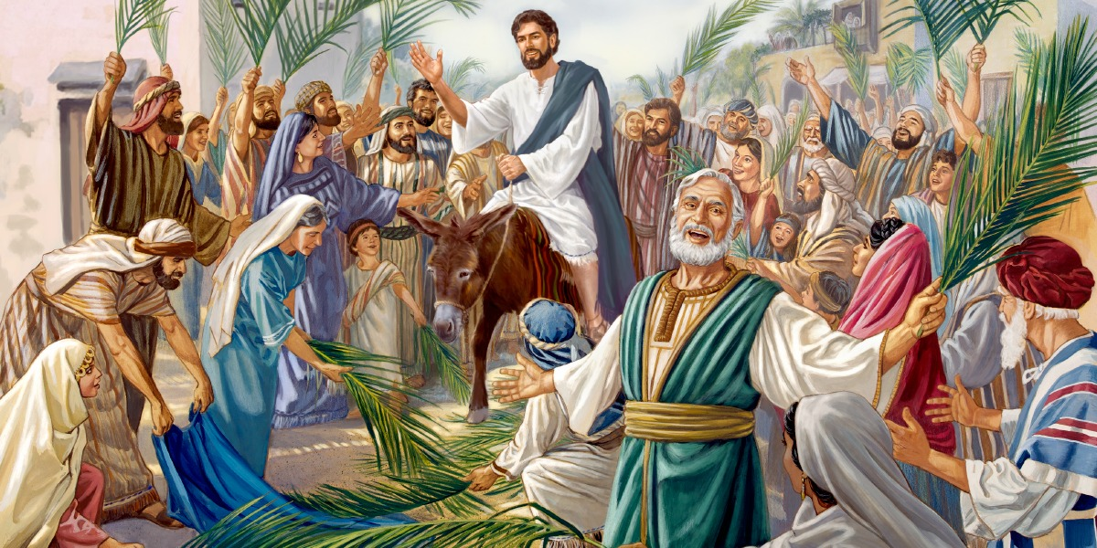 Palm Sunday Mass Reflection (2020)