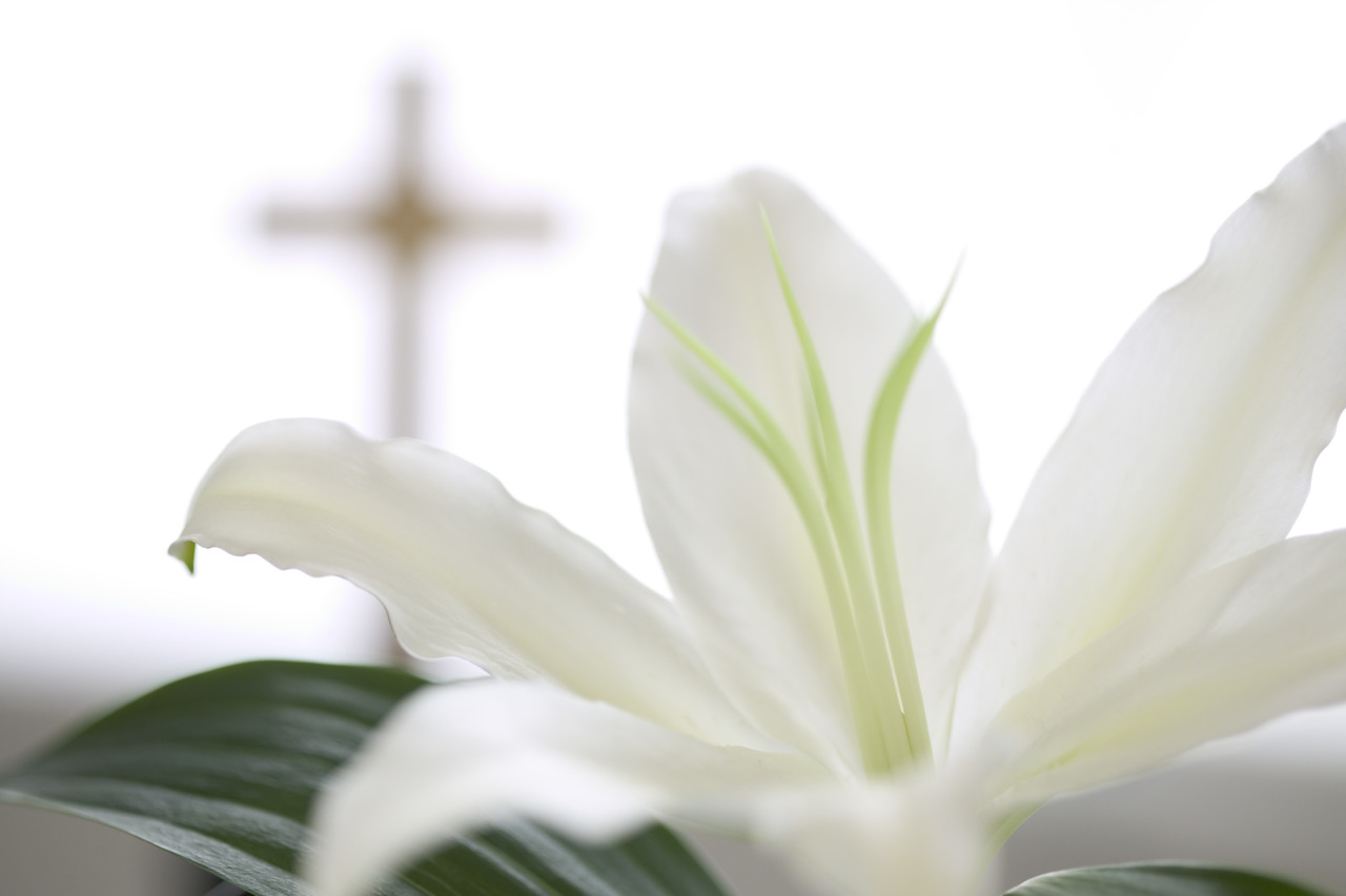 Easter Sunday Reflection (2020)